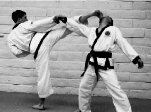 Defense Against Punch<br>Hook Kick Followed By <br>Round House Kick<br>Late 1980s